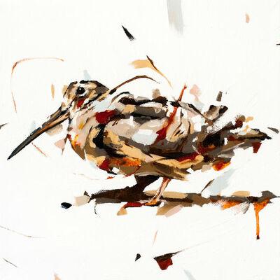 Thibault Jandot, 'Woodcock', 2015