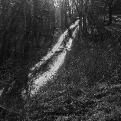 Larry Fink, 'Martins Creek, PA', January 2017