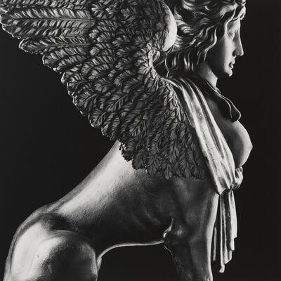 Robert Mapplethorpe, 'Sphinx', 1988