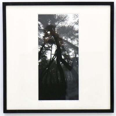 Bae Bien-U, 'KyungJu's forest', 1998