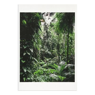 Thomas Struth, 'Sao Francisco de Xavier (from Paradise)', 2004
