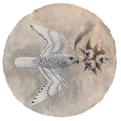 Kahn & Selesnick, 'Falcon Augury', 2019