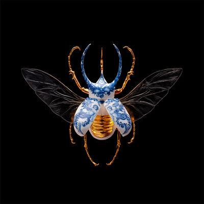 Samuel Dejong, 'Anatomia Parvus Prints, Atlas Beetle Open', 2020