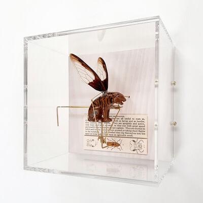 Jane Edden, 'Carnivorous', 2019