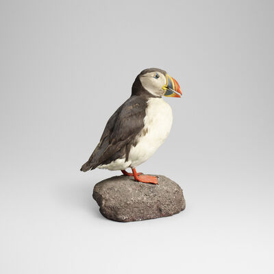 Ole Hoegh Post, 'Puffin', 1986