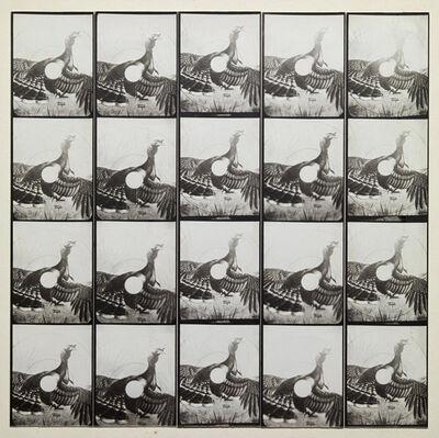 Jared Bark, 'Untitled, PB#1085', 1974