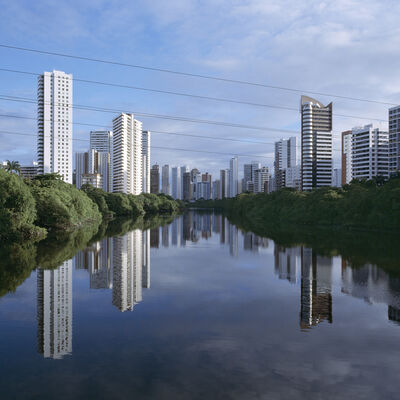 Magda Biernat, 'Mangroves in Recife, Brazil', 2013