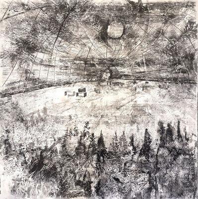 John Simpson, 'Biological Landscape 1', 2018