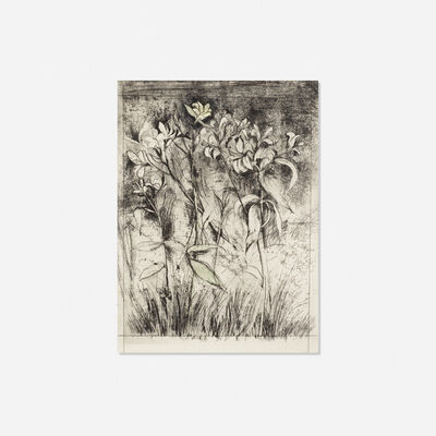 Jim Dine, 'Superb Lilies (from A Temple of Flora portfolio)', 1978