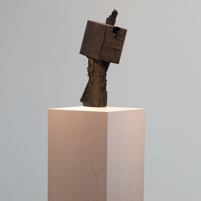 Joseph Havel, 'Wander', 2017