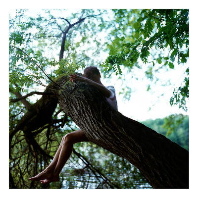 Sascha Weidner, 'Stammbaum II', 2009