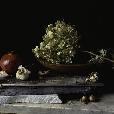 Paul Cary Goldberg, 'Still Life with Pomegranate, Garlic, Hydrangea and Nuts'