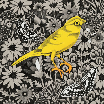 Billy Hassell, 'Canary', 2019
