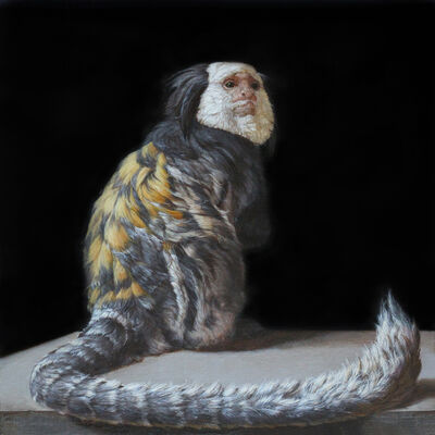 Patricia Traub, 'He Carries the Wild Gene', 2016