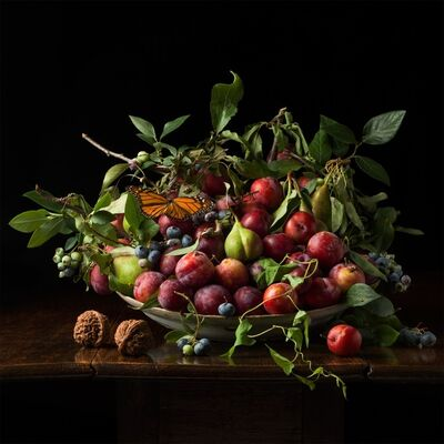 Paulette Tavormina, 'Plums and Chinese Walnuts, after G.G.', 2013