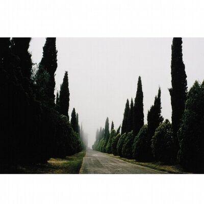Joel Meyerowitz, 'Tuscany, Castello, 1996', 1996