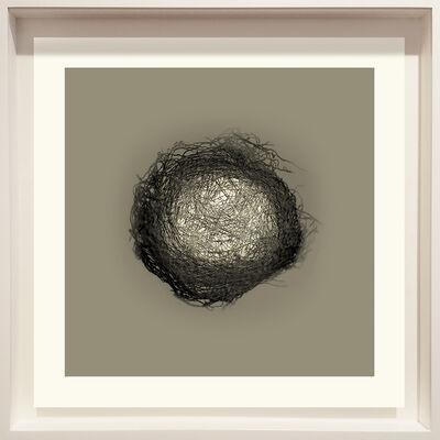 Lynn Dunham, 'Nest No. 5', 2020