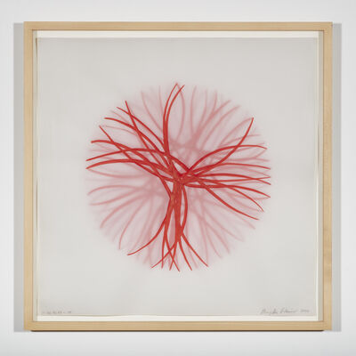 Birgitta Weimer, 'Morphogenesis sketch', 2004