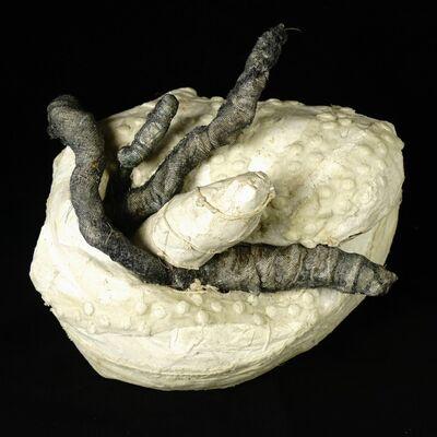 Laura Lee Green, 'Branch Pod', 2017