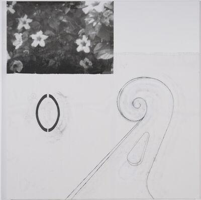 Julião Sarmento, 'Thing White Plants', 2013