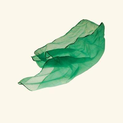 Amy Friend, 'Green babushka', 2016