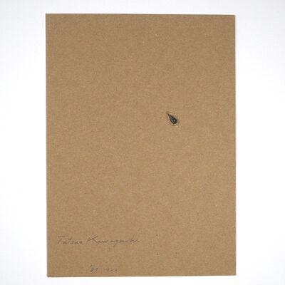 Tatsuo Kawaguchi, 'Relation – One Seed of Lead / Apple', 1987