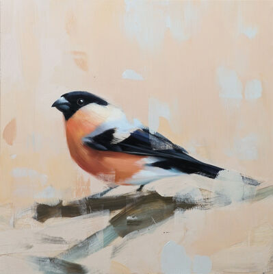 Alpay Efe, 'Studio Note with Bull Finch', 2017