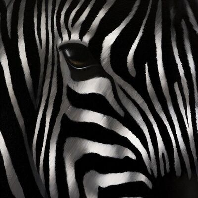 Norma Bessières, 'Zebra 'Séducteur'', 2016