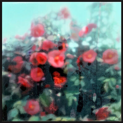 Wendelin Wohlgemuth, 'Red Flowers', 2020