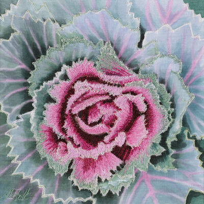 Alison Holt, 'Pink Cabbage II', 2019