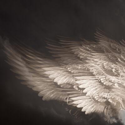 Eriko Kaniwa, 'Wings #10', 2019