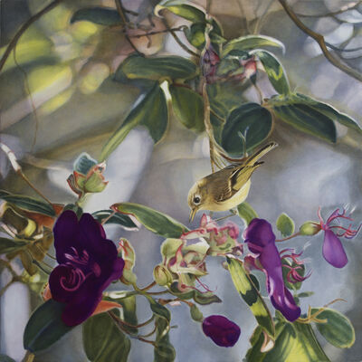 Diane Andrews Hall, 'Ruby Crowned Kinglet II'