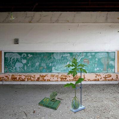 Debra Howell, 'Cultivar 2', 2019