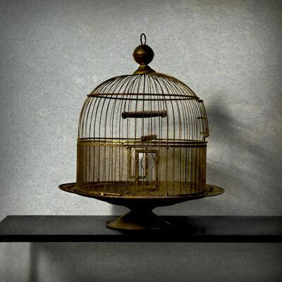Robert Moran, 'Free At Last', 2011