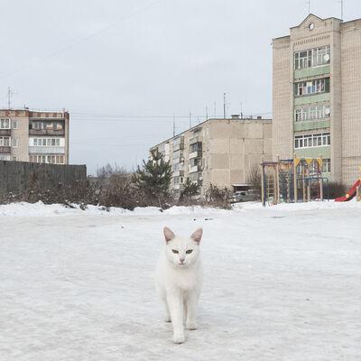 Dmitry Markov, 'Nerekhta', 2018