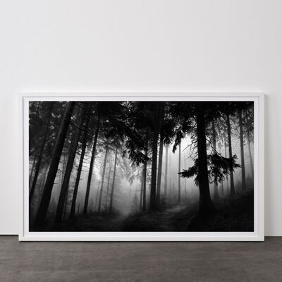 Robert Longo, 'Fairmount Forest', 2014