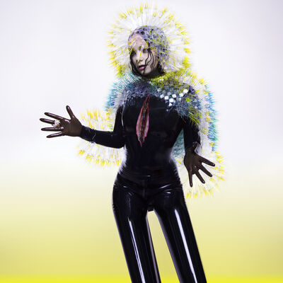 Inez & Vinoodh, 'Björk - Vulnicura', 2015