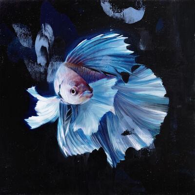 Alpay Efe, 'Blue Betta', 2017