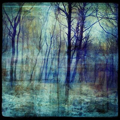Mark Munroe-Preston, 'Electric Forest', 2019