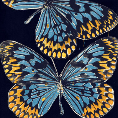 Donald Sultan, 'Butterflies, Jan 25, 2006', 2006
