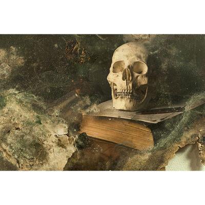 Aaron Alamo, 'Skull III', 2014