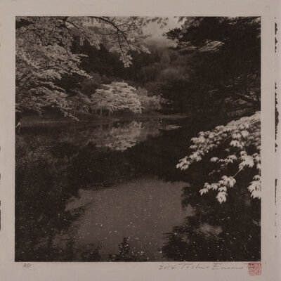 Toshio Enomoto, 'Rainy Day by Handanuma Swamp 2, Date-gun, Fukushima', 2014