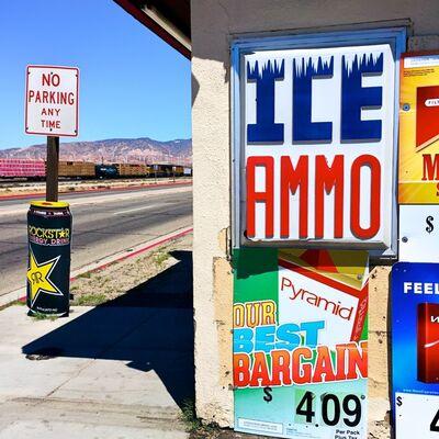Osceola Refetoff, 'ICE/AMMO - Mojave, California', 2016