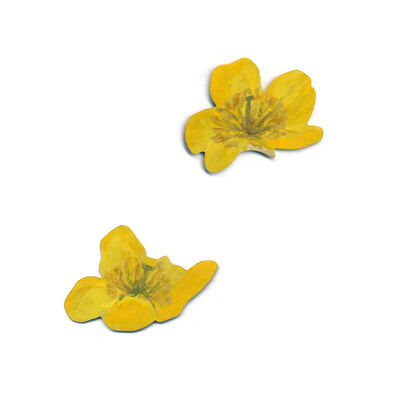 CHRISTOPHER THOMPSON ROYDS, 'Natura Morta: Buttercup Earrings (Post)', 2020
