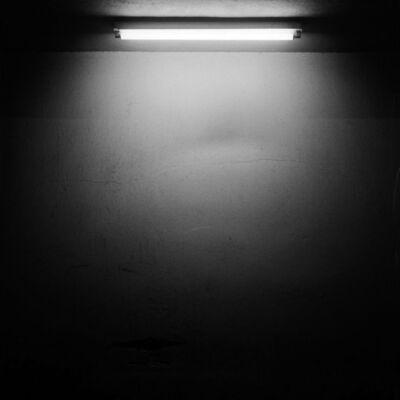 Oswaldo Ruiz, 'Fluorescencia ', 2016
