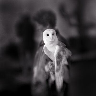 Keith Carter, 'White Owl', 2004