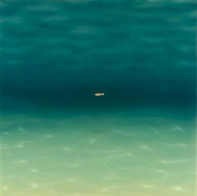 Maurizio Lanzillotta, 'Copper Fish', 2015