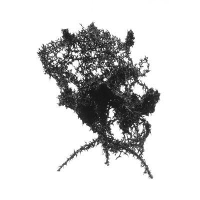 Aljoscha, 'Object #200', 2014
