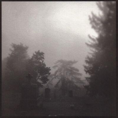 Denise Oehl, 'Soft Trees', 2018