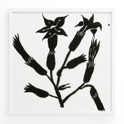 Lena Gustafson, 'Botanical 9', 2019